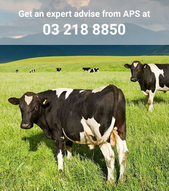 Dairy Farm Consultants